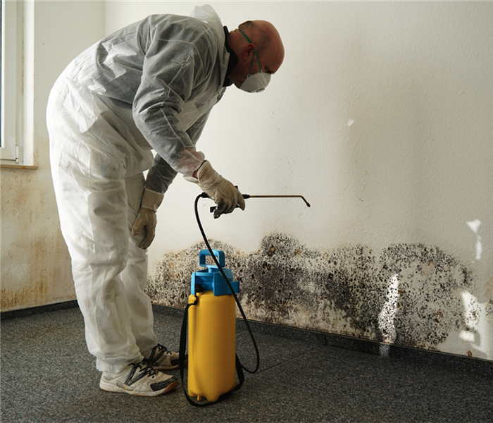 Why SERVPRO Protecting Yourself When Removing Mold