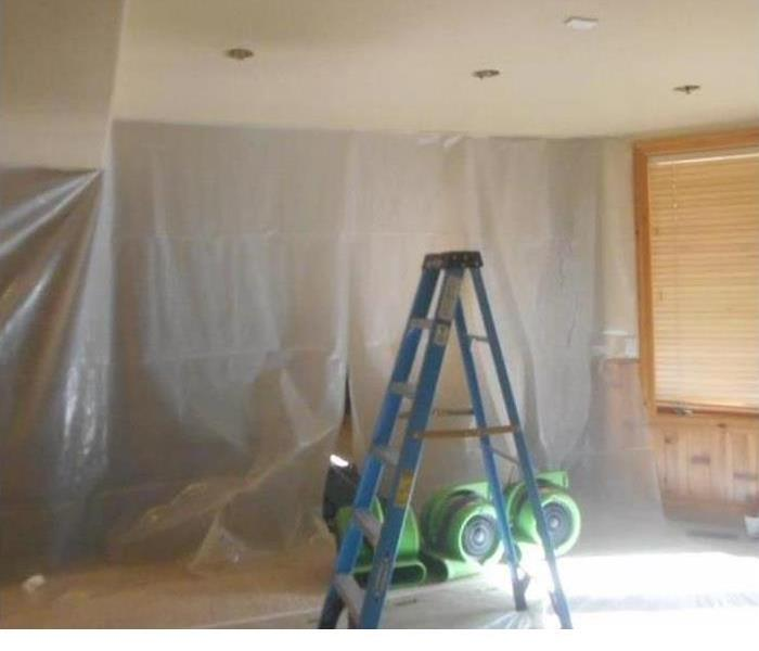 Mold Remediation 5 Places You Never Thought To Check for Mold Growth