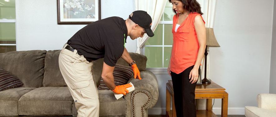 St. George, UT carpet upholstery cleaning
